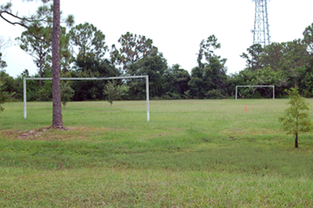 game field